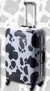 目立つスーツケース